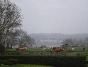 biogaard
